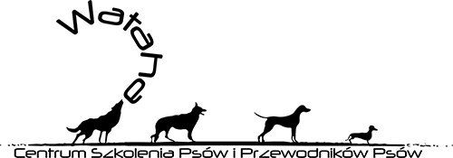Centrum szkolenia i tresury psów Wataha Poznań